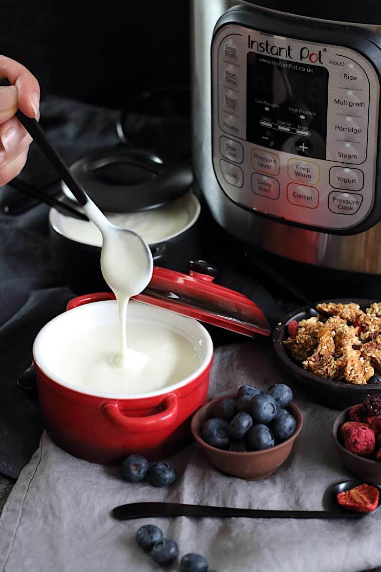 Instant Pot Keto Cold Start Greek Yogurt with creaminess and irresistible texture