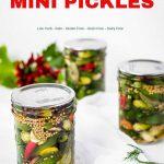 Mini Keto Pickles