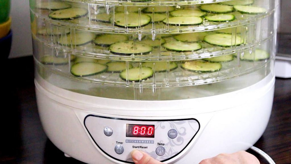 switching dehydrator on for keto chips