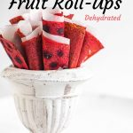 Dehydrated Homemade Fruit Rollups