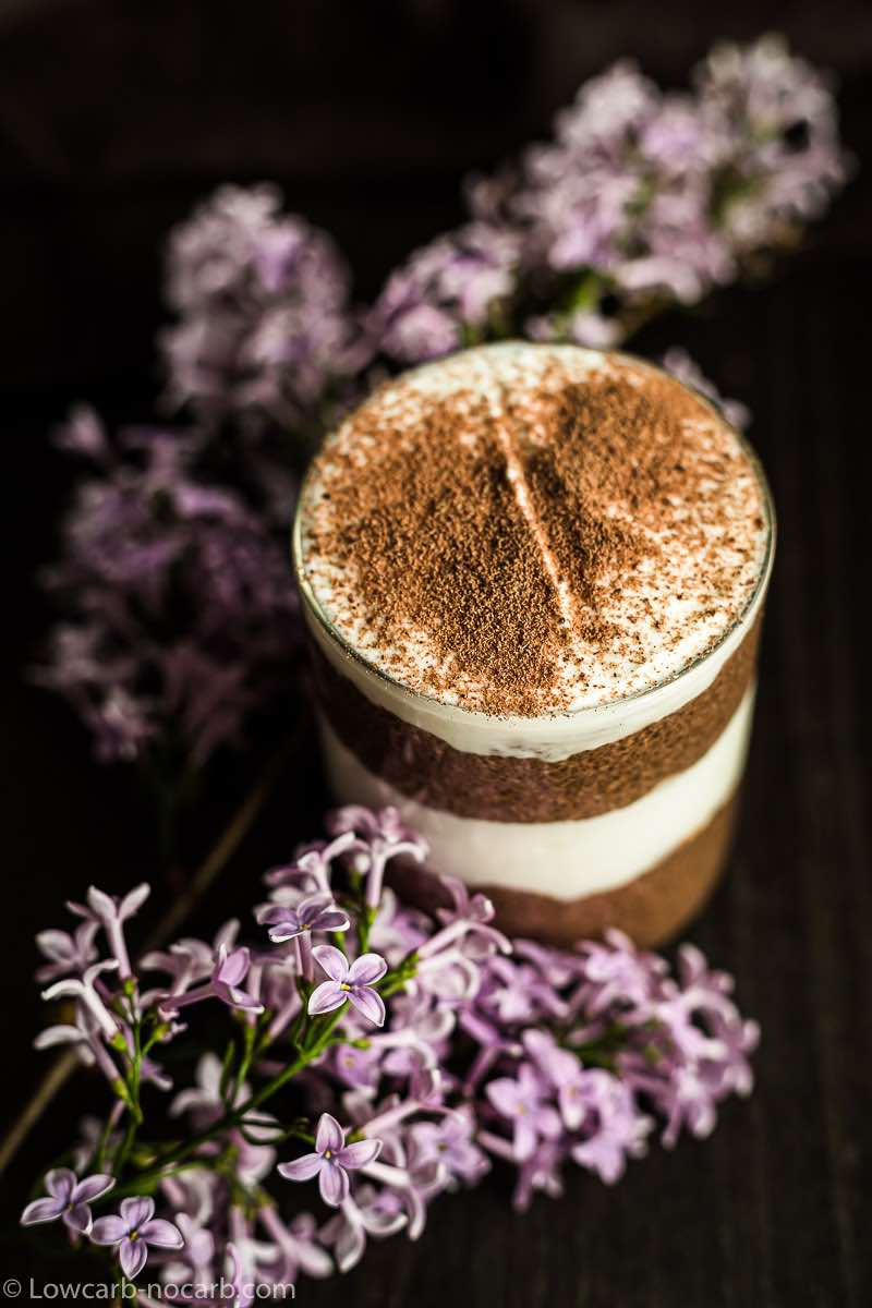 Blender Chocolate Pudding with cocoa powder