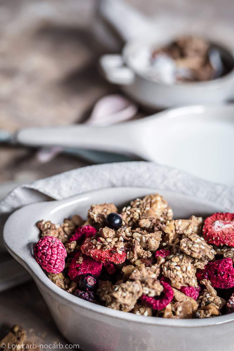 gluten Free Granola with dry berries