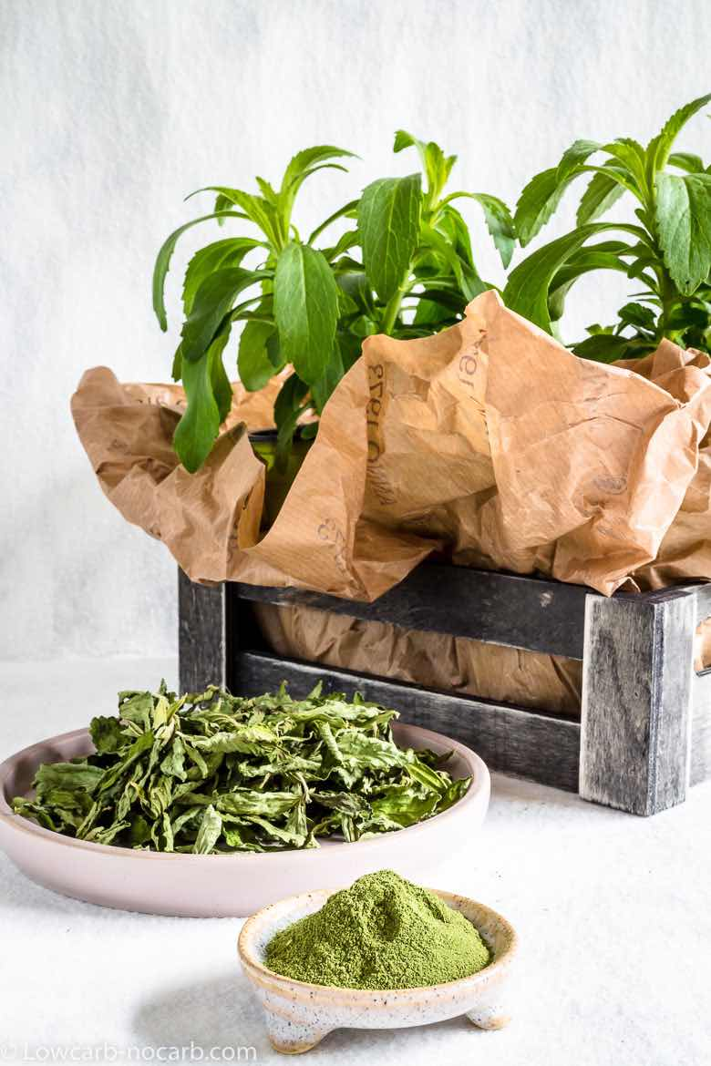 Low Carb Sweeteners Stevia Plant, dried and powder natural homemade