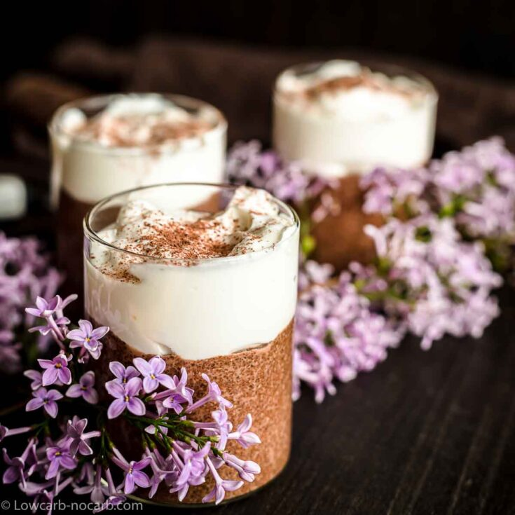 Chocolate Pudding made from Chia seeds and with purple flowers around it